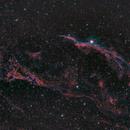 Western Veil Nebula (ngc 6960) - Bicolour,                                xaralam