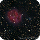IC 5146 Cocoon Nebula,                                Tyler Jackson Welch