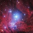 Cone Nebula,                                Darkestskiesdotcom