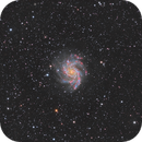 NGC 6946 The Fireworks Galaxy,                                David Wills (Pixe...
