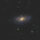 """NGC 3953 & NGC 3917 - 8"""" RC,                                Andrew Burwell"""