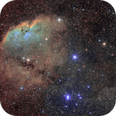 RCW19 and some cometary globules,                                Brian Boyle
