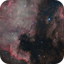 North America and Pelican Nebulae,                                Anthony Quintile