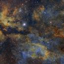 IC1318 Gamma Cygni Nebula,                                  Toshiya Arai