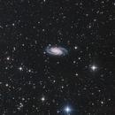 NGC 2903 Spiral Galaxy,                                Dennis Kaiser