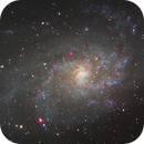 Messier 33,                                Martin Magnan