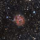 IC 5146,                                Virginie