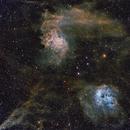 Flamming Star,                                Marcus Holinka