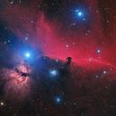 Horsehead Nebula in Orion,                                Steve Milne
