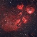 Frankenstein's Cat (NGC 6334),                                Todd
