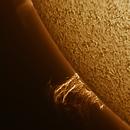 Prominence 20210129,                                Ed Magowan