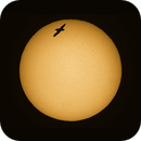 Bird flying in front of the sun,                                nonsens2