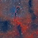 IC-1396 The Elephant Trunk Nebula,                                Earl Hebert