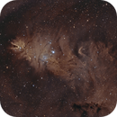 NGC2264_2021_03_28_SHO,                                Dominique Durand