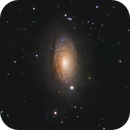M63 The Sunflower Galaxy,                                Andreas Eleftheriou