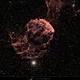 "First light Celestron 8"" RASA - IC 443 - Sh2-248 in HαRGB,                                  Uwe Deutermann"