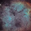IC1396 Nébuleuse trompe d'éléphant,                                Daniel Lamothe