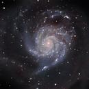 Messier 101 - The Pinwheel Galaxy - Full Moon Galaxy Quest Part 5,                                Timothy Martin & Nic Patridge