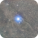 Blue Eyed Horsehead RGB,                                Seldom