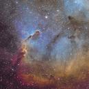 Elephant Trunk Nebula,                                Thomas