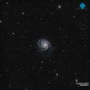 M101 Galaxy & Co. deep field,                                Francesco di Biase