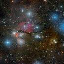 NGC 2170,                                Bart Delsaert