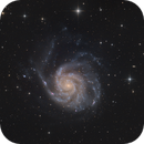 Galaxy Season 2020 - M101,                                Michael S.