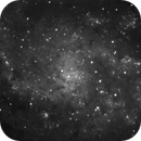 The Triangulum Galaxy (M33),                                dnault42