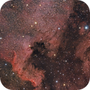 NGC 7000 & IC 5067 North America & Pelican Nebulae,                                Angelillo