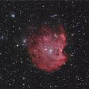 NGC 2175,                                Fabio Zucconi