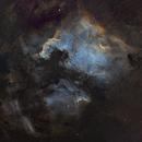North America Nebula,                                Bradisback