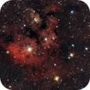 NGC 7822,                                Camille COLOMB