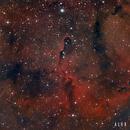 IC 1396 - Nebulosa de la trompa de elefante,                                Alex Cortés Martinez