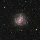 M83, the Southern Pinwheel galaxy,                                TWFowler