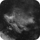 Pelican Nebula - HaOIISI with L - Gray Scale,                                Dennis Vollink
