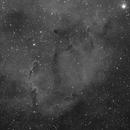 IC1396 - Ha (Elephant Trunk),                                GregK