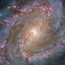 M83 - HLA Processing,                                Robert Eder