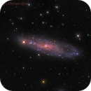 NGC 247,                                Mike Miller