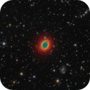 M57 - The Ring,                                Jason Guenzel