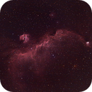 Seagull Nebula (IC 2177),                                Miles Zhou