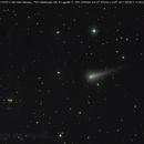 cometa C/2012 S1 Ison del 04/10/2013,                                Rolando Ligustri