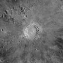 Copernicus Apr 5th 2020,                                Wouter D'hoye