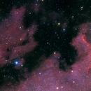 NGC 6997,                                Roger Menard
