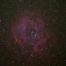 Rosette Nebula,                                John Harper