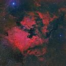 North American Nebula HaLRGB Widefield,                                Greg Nelson