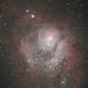 The Lagoon Nebula,                                Tyler Curtis
