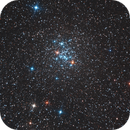 "Pearl Cluster and Eta Car Test with Skywatcher 10"" CF  f/4  :-),                                Daniel Nobre"