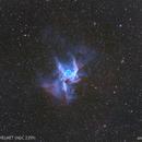 NGC 2359 - Thor's  Helmet - Bicolor,                                Anis Abdul