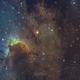 SH2-155, The Cave Nebula,                                Emil Andronic