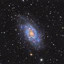 NGC 2403,                                Nathan Duso